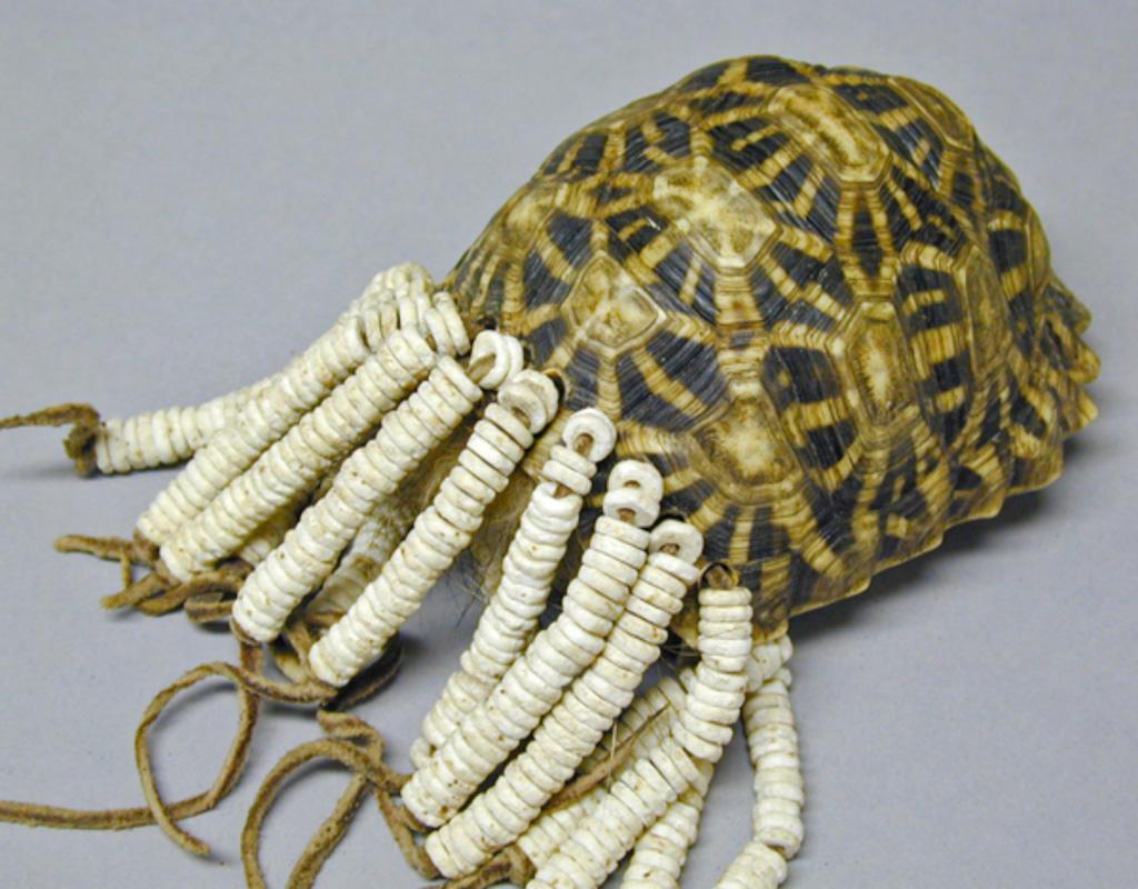 Pitt Rivers Museum Body Arts | Tortoiseshell powder compact